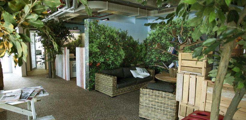 עיצוב משרדים ידידותיים לסביבה